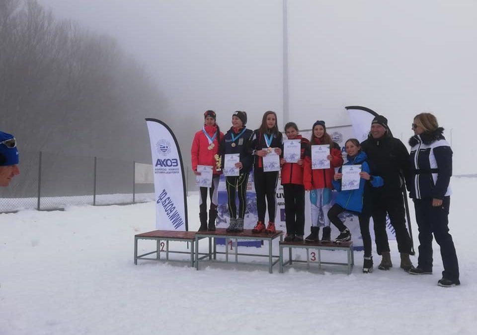 3-5 ΠΗΓΑΔΙΑ: ΒΑΛΚΑΝΙΚΟ ΚΥΠΕΛΛΟ FIS 2019